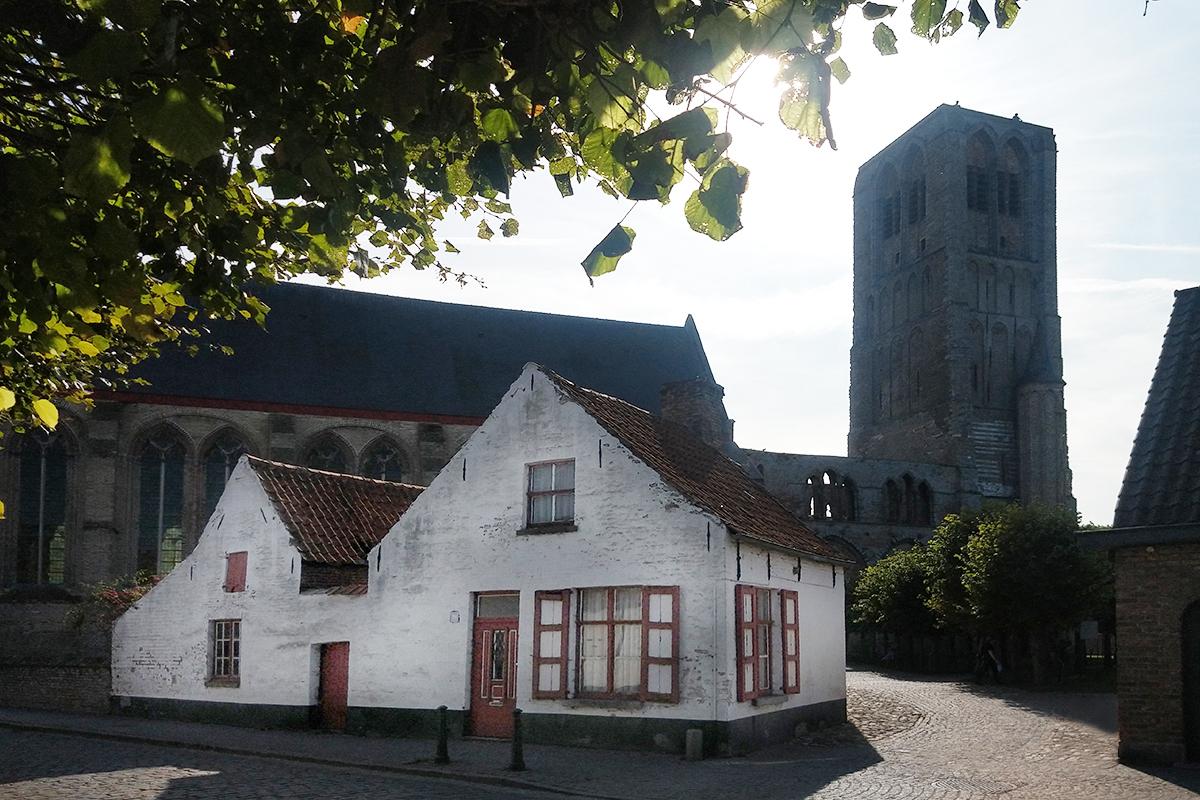 zicht op de kerk van damme